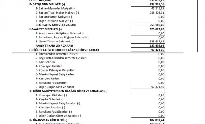 balat-balatacilar-balatacilik-gelir-tablosu-kar-yazdi-2021-temettu-bilanco