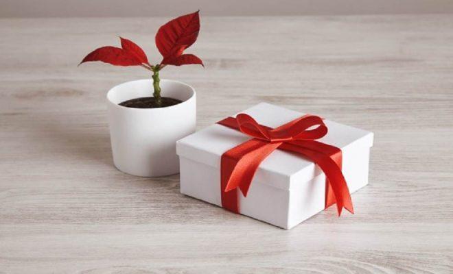 kisiye-ozel-anneler-gunu-hediyeleri